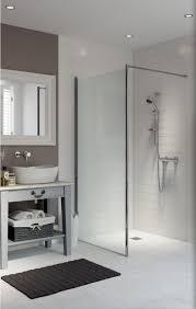 Shower Screen 1
